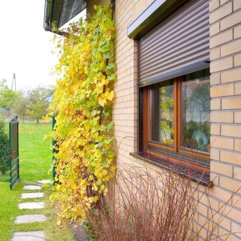 Piękne rolety i żaluzje Kraków - zewnętrzne i wewnętrzne